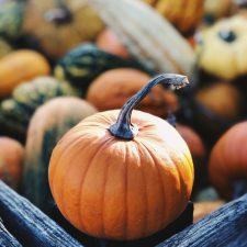 Sélection culturelle pour Halloween : films, livres, musique…